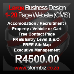 large business website design package