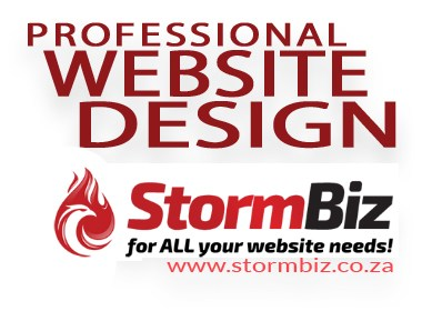 Professional Website Design