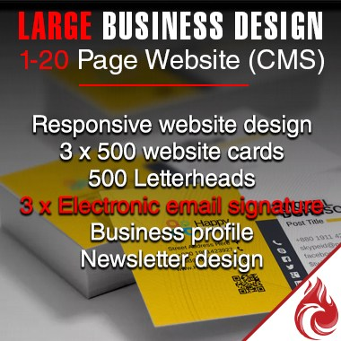 Large Business Revamp Package