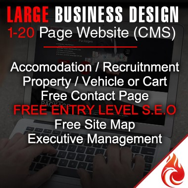 Large-business-website